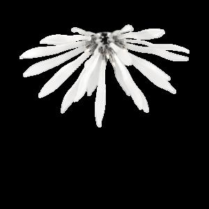 Lampadario plafoniera cod. 0342